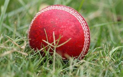 Cricket ball in the grass.