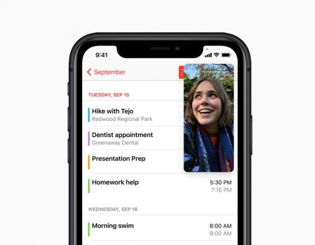Reading Chronicle: With Picture-in-Picture, users can watch a video or take a FaceTime call while using another app. Picture: Apple