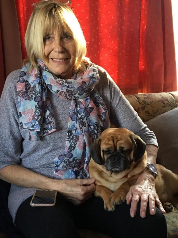 Reading Chronicle: Sandra Rolfe and her Crossbreed Penny, a mix of Pug and King Charles Spaniel. Picture: Vets Now