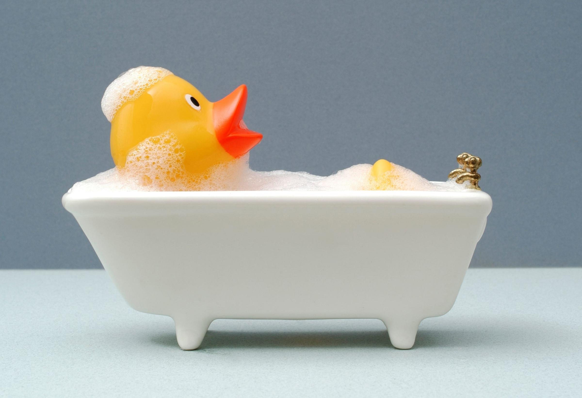 Duck in bath