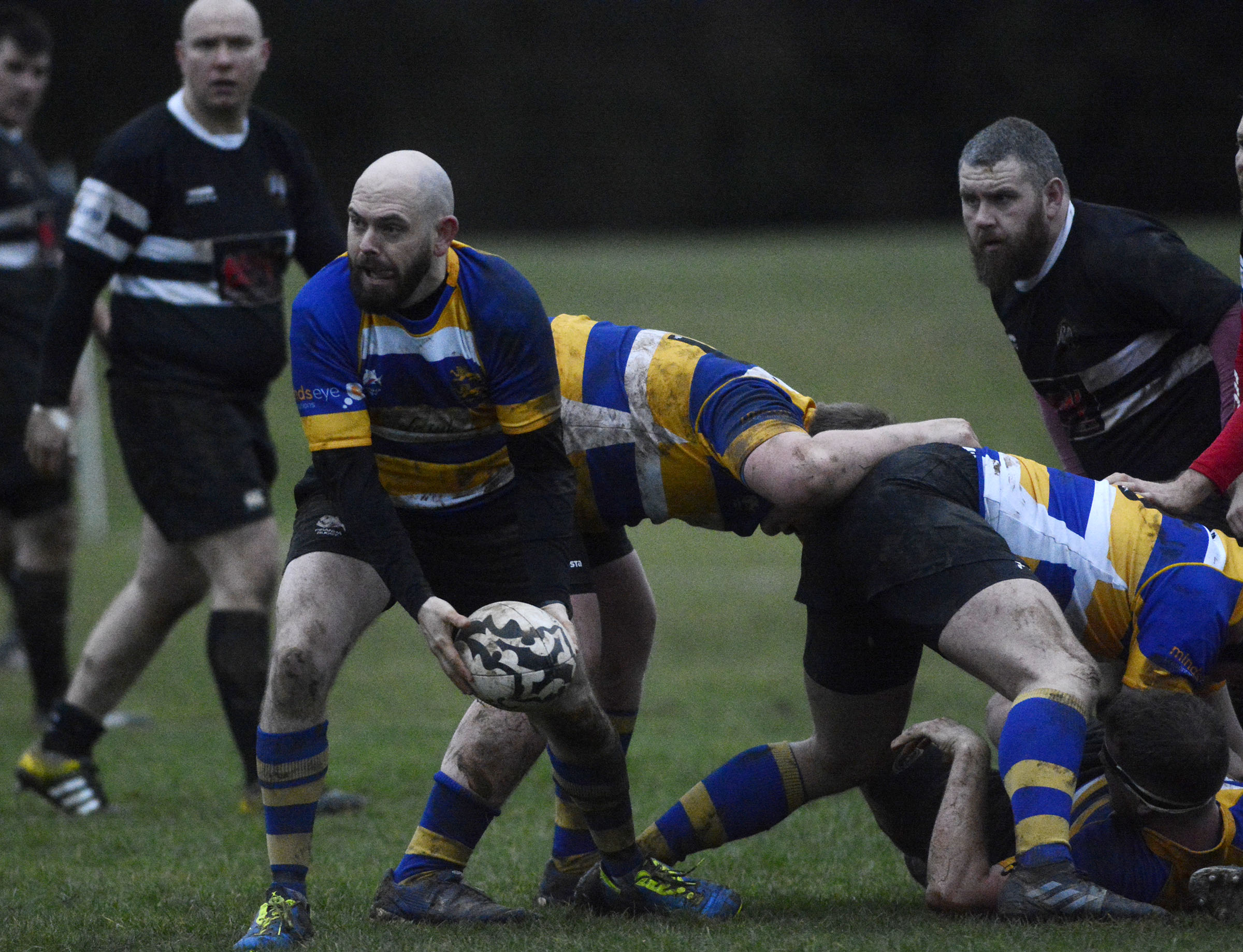 Berkshire Shire Hall (blue/yellow) beat Farnham Royal 27-18 Pictures by Paul Johns 180176