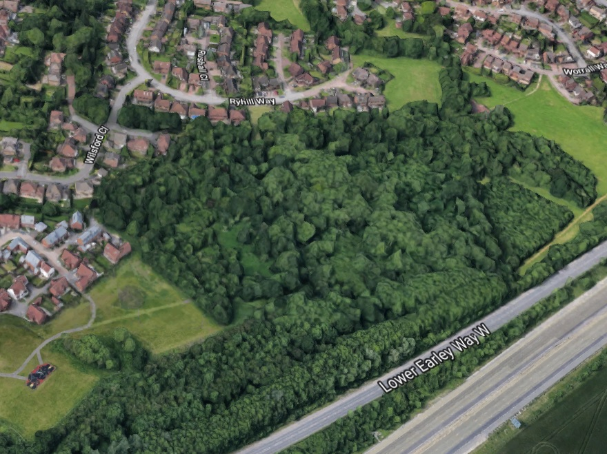 Police appeal for witnesses after teenager injured in the woods