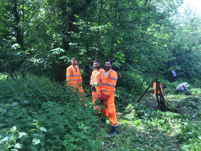 Balsam bashing Thames Water employees clear invasive species